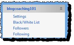 Basic User Settings in Tweet Adder